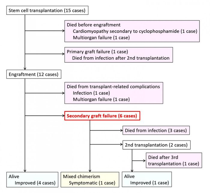 This image shows the prognosis of 15 patients at completion of treatment. / Credit: Satoshi Okada