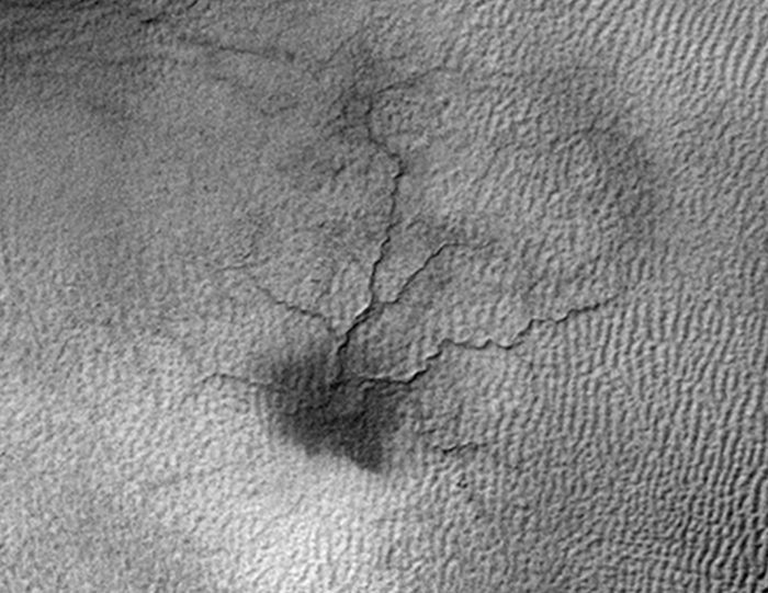 """Martian """"spiders"""" are strange black structures that occur only on the South Pole of the planet, but now NASA has been able to observe their growth over time for the first time."""