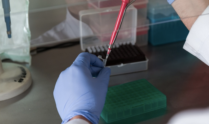 A PCR-based assay created by Canon aims to improve the assessment of SMA / Image credit: Pixabay