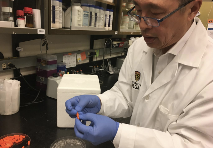 This is Dr. Thomas Louie with the fecal transplant capsules. / Credit: Cumming School of Medicine