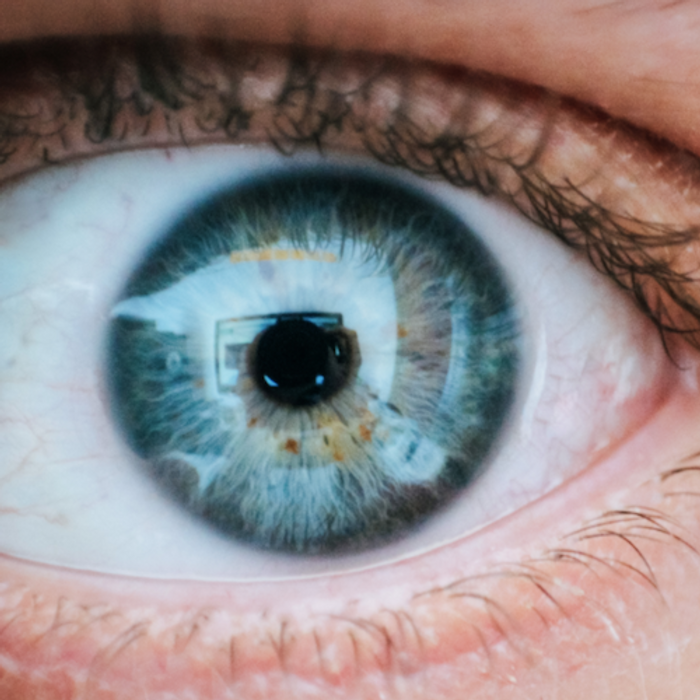 New work may lead to treatments for diseases as varied as dry eye and type 2 diabetes. / Image credit: Pexels