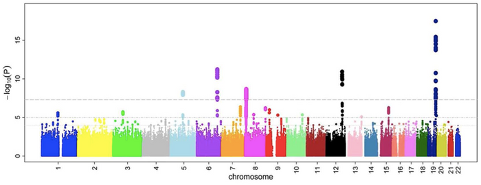 A Manhattan plot, a typical part of GWAS analysis. / Image credit: Ikram MK et al (2010) PLOS Genetics