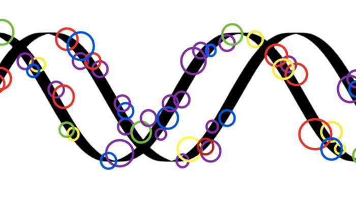 Modified SVG public domain image