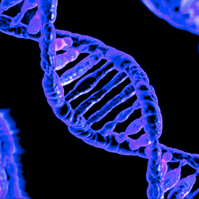Genetic modifications can have a big influence on gene expression. / Image credit: Pixabay