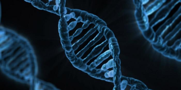 DNA / Credit: Max Pixel
