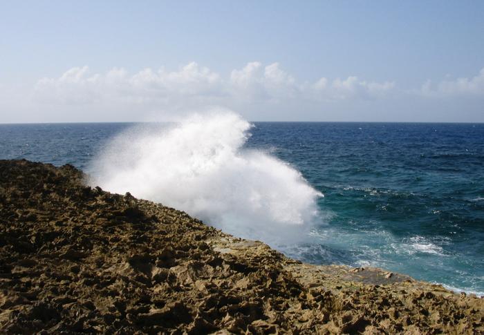 Waves break on the island of Curaçao / Image credit: Carmen Leitch