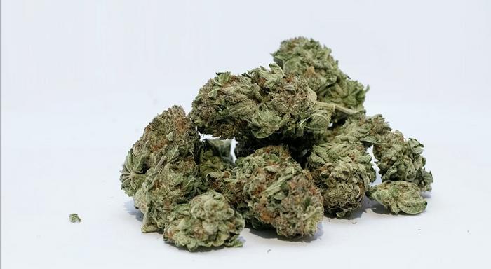 Marijuana / Image credit: Pixabay