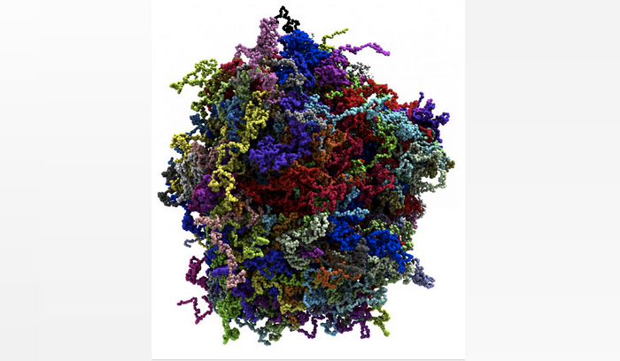 Individual protein molecules comprising the condensate are highlighted using color. / Credit: Han-Yi Chou, University of Illinois, Urbana-Champaign