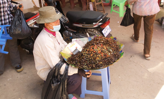 In Cambodia, roasted insects are sold as a snack. / Credit: Carmen Leitch