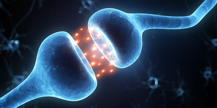 There are ~100 trillion synapses in the human brain.