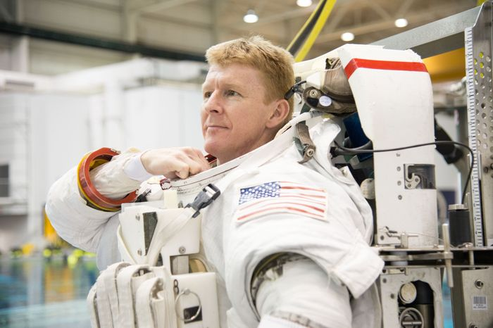 Tim Peake will be performing a spacewalk this month to make a repair.