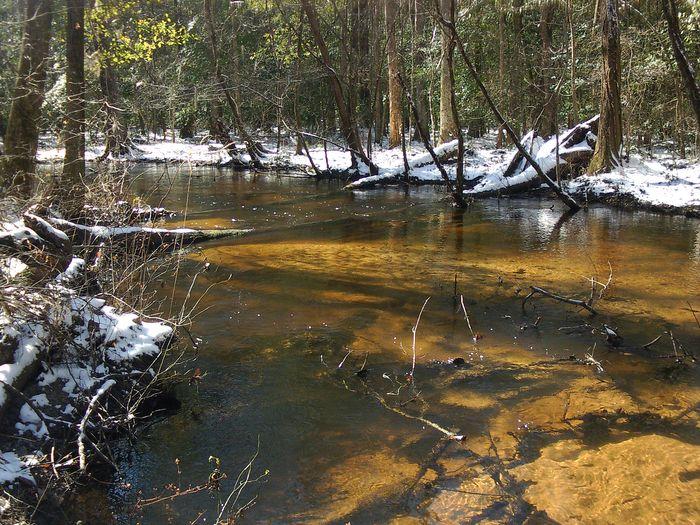 Tinker Creek, one of 11 sites surveyed