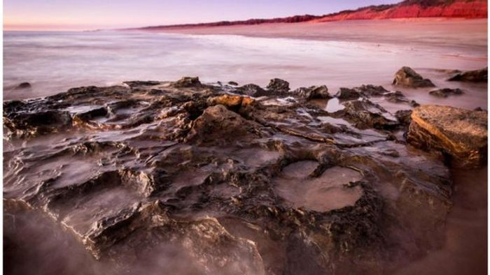 The sandstone that gets revealed during certain low tide points on these Western-Australian beaches reveal large footprints from dinosaurs.