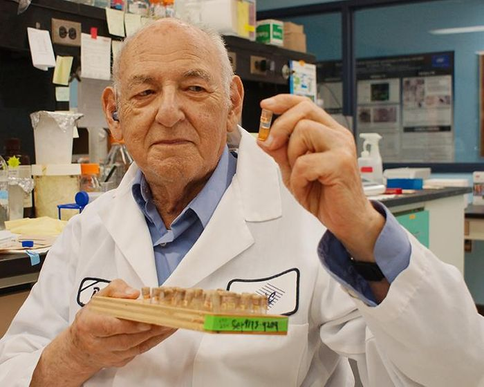 Abraham Eisenstark, the research director at the Cancer Research Center and professor emeritus of biological sciences at MU, began testing a collection of vials of Salmonella that had been sitting on a shelf for decades./Credit: Alycia McGee, Cancer Research Center