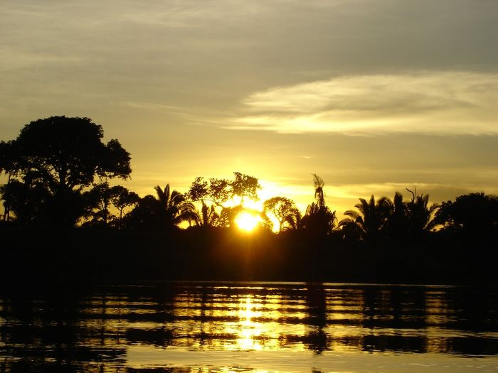 The Acre state sits in northwestern Brazil, in the heart of the Amazon. Photo: Pixabay