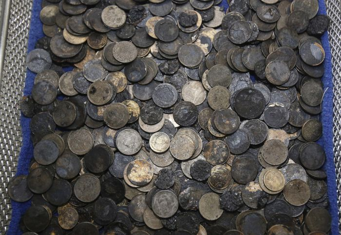 All of the coins that were removed from the turtle's stomach.