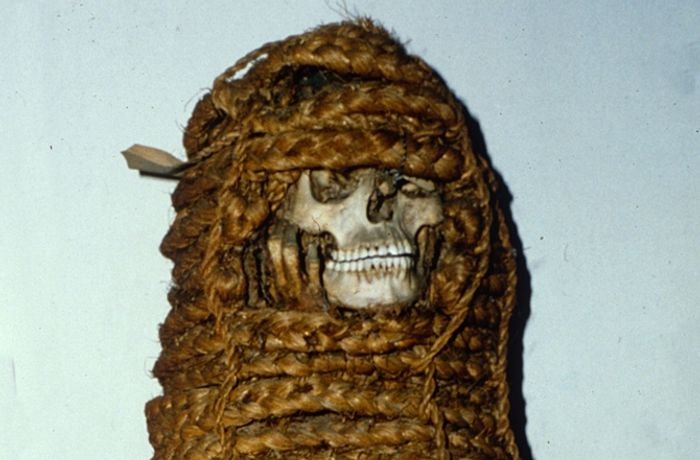 Researchers discovered antibiotic resistance genes in this mummy's microbiome.
