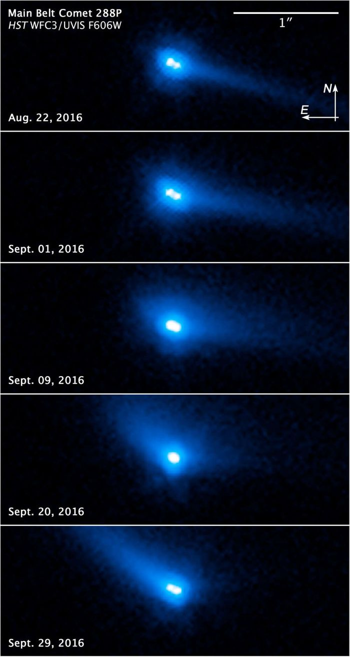 Actual images of 288P, captured with the Hubble Space Telescope.