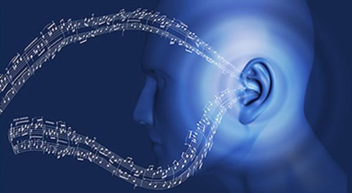 Music is such a powerful force that ~30% of CI users got a cochlear implant simply to be able to listen to music again.