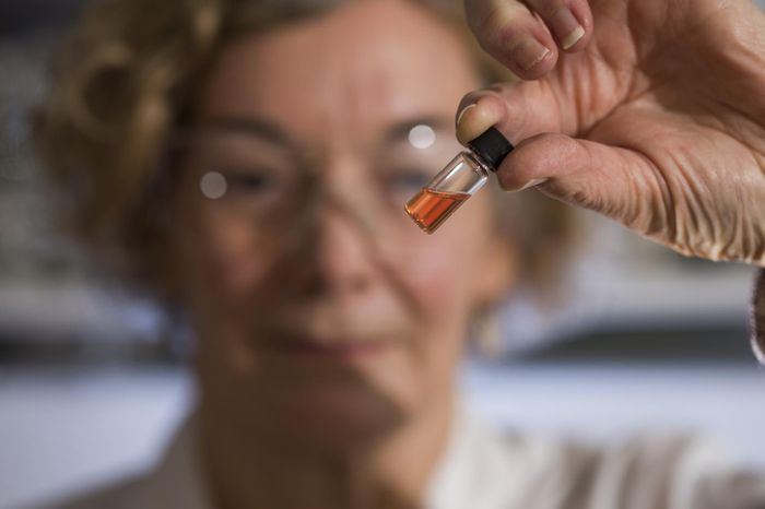 Biogeochemistry Lab Manager Janet Hope from the ANU Research School of Earth Sciences holds a vial of pink colored porphyrins representing the oldest intact pigments in the world. / Credit: The Australian National University