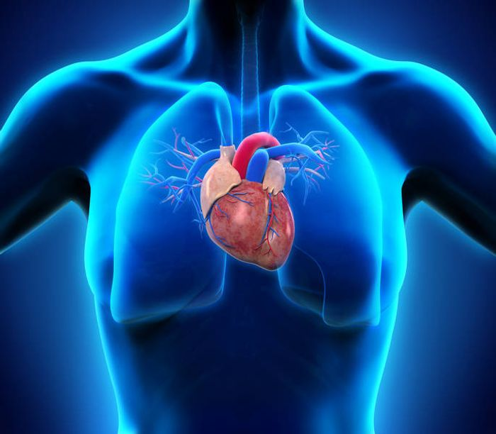 Many people think of heart attacks as a disease that primarily affects men. Women, however, are more likely to die during the first year after a heart attack. Source: TUM