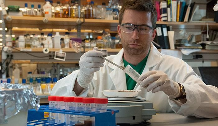 Postdoc Zachary Charlop-Powers examines DNA from soil samples that might encode microbial molecules with interesting properties. / Credit: Zach Veilleux/The Rockefeller University