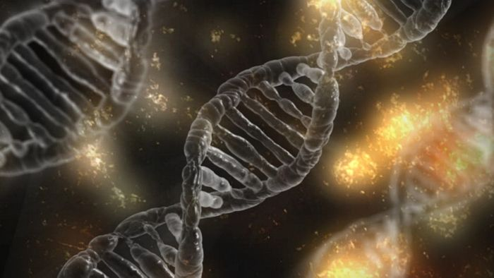 Genomic structural variations  have a significant effect on changes in DNA methylation in many cancers. Photo: Pixabay