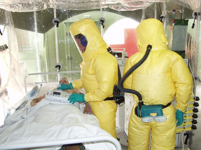 Ebola is a deadly virus. But could we learn something from it to fight brain tumors? Photo: Pixabay