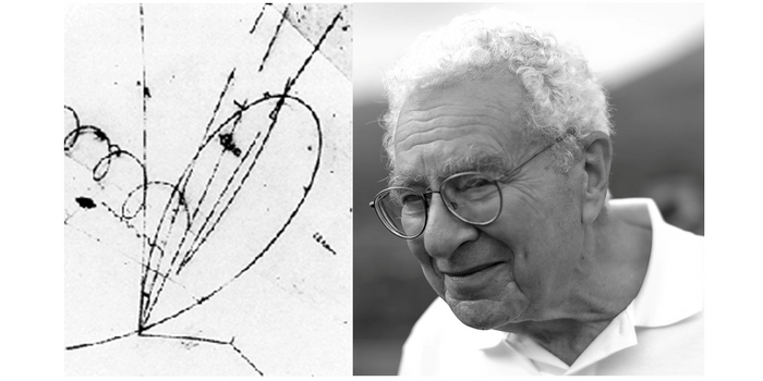 Charm quarks and Gell-Mann (Wikimedia Common)
