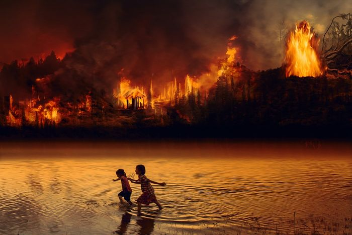 Amidst all the despair with the ongoing fires in the Amazon, could we turn toward technology to help us save the rainforest? Photo: Pixabay