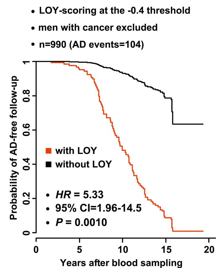 Probabilities for AD-free follow-up time curves, reduced for men with LOY (red) compared to men without LOY (black), using pooled data.