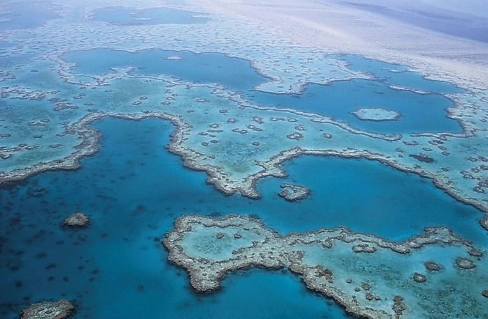 Scientists fear that the tipping point is near for the Great Barrier Reef. Photo: Pixabay
