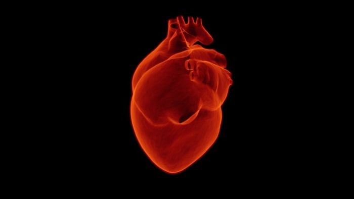 Nearly three million Americans are living with atrial fibrillation (AF).