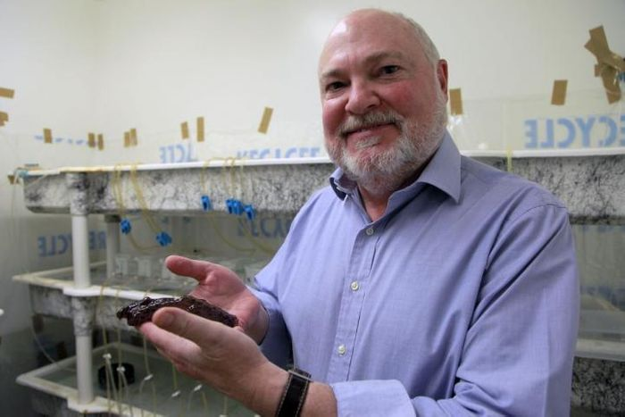 This is David Glanzman holding a marine snail. / Credit: Christelle Snow/UCLA