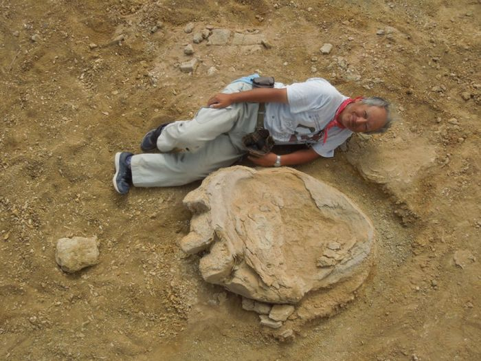 Professor Shinobu Ishigaki of the Okayama University of Science poses next to the large dinosaur footprint.