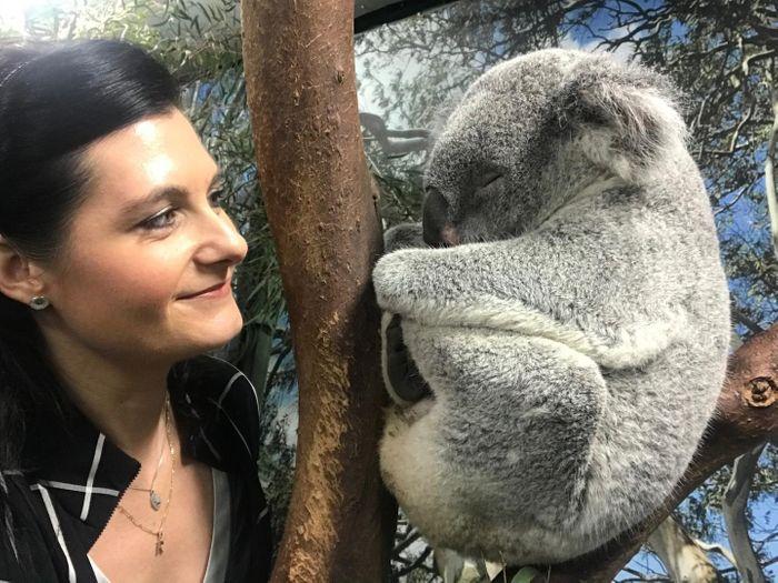 Professor Rebecca Johnson with a koala. / Credit: University of Sydney