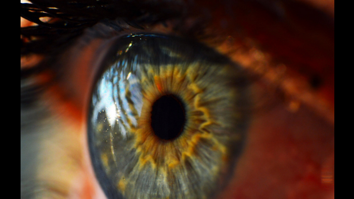 The human eye (Getty Images)