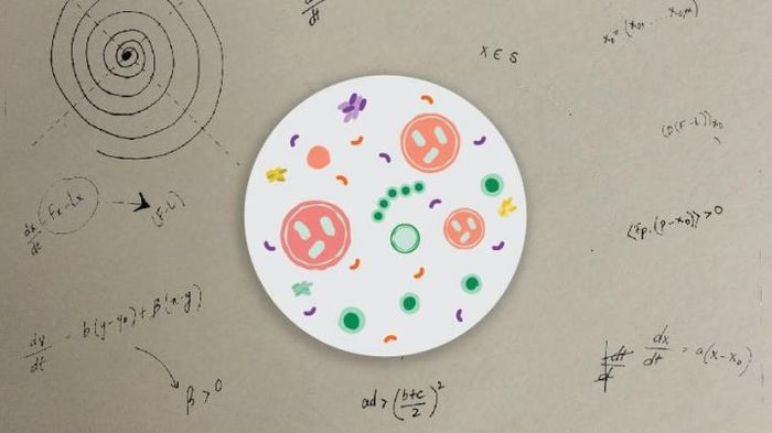 Using advanced mathematics, researchers hope to create models of biological systems that can inform our understanding of normal development and disease. / Credit: University of Michigan