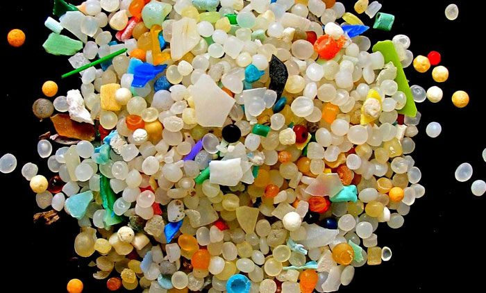 Microbeads like these are a huge risk for animals and humans. Photo: Resource Magazine