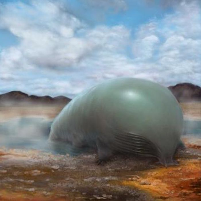 An artist's rendering of organosilicon-based life. Organosilicon compounds have carbon-silicon bonds. Research from Frances Arnold's lab at Caltech showed that bacteria can make organosilicon compounds. This doesn't prove that silicon- or organosilicon-based life is possible, but shows that life could be persuaded to incorporate silicon into its basic components. / Credit: Lei Chen and Yan Liang (BeautyOfScience.com) for Caltech