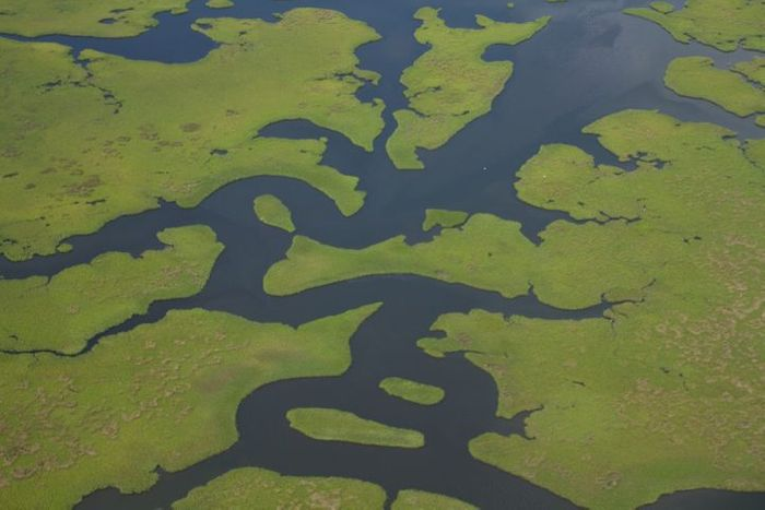 An aerial view of the Mississippi River Delta. Photo: mississippiriverdelta.org