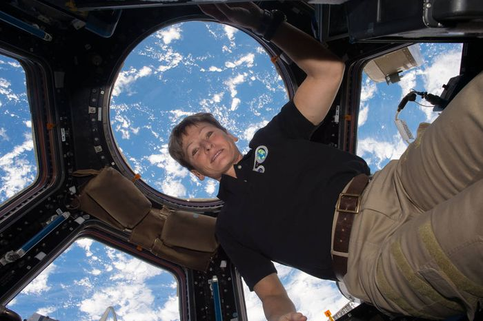 Peggy Whitson has retired from NASA.