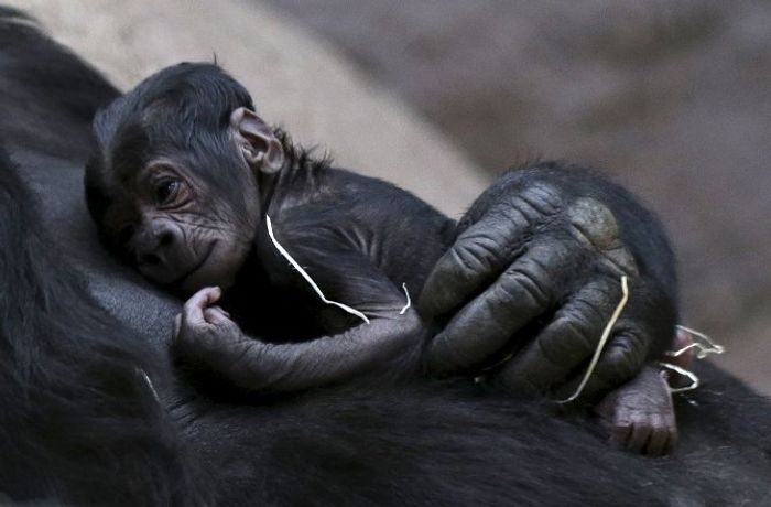 Shinda holds her newborn baby after it was born.