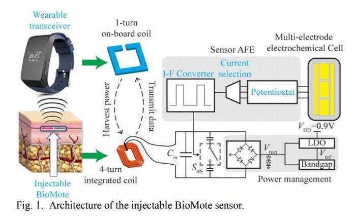 chip diagram, credit: UC San Diego,