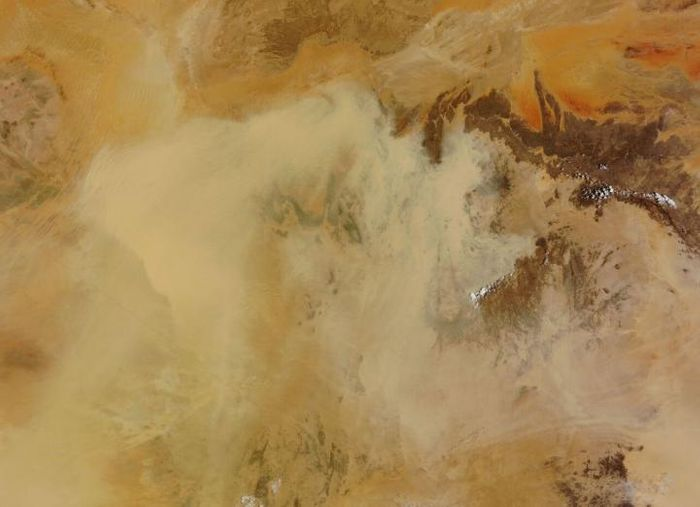 Viruses and bacteria fall back to Earth via dust storms and precipitation. Saharan dust intrusions from North Africa and rains from the Atlantic. / Credit: NASA Visible Earth