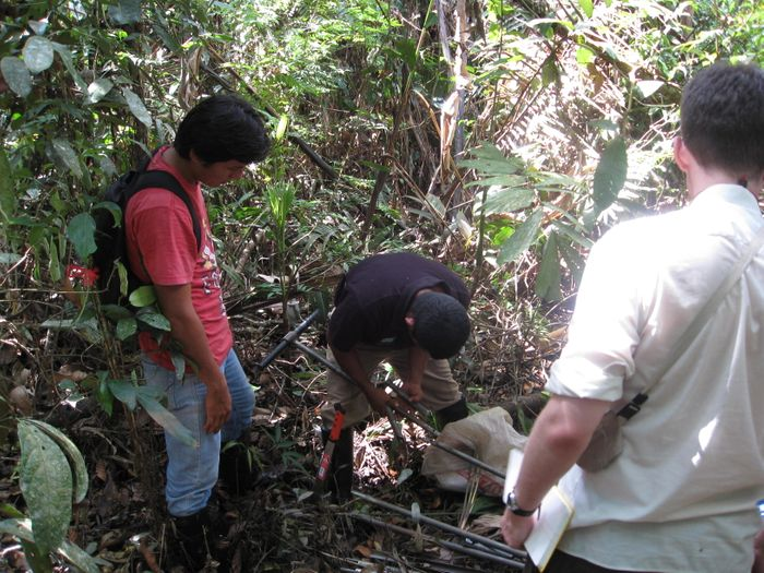 Peat coring at Quistococha peatland, Peru. Photo: UK Tropical Peatland Working Group