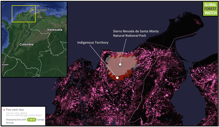 Global Forest Watch shows heavy tree cover loss in the area surrounding the Indigenous reserves and Sierra Nevada de Santa Marta Natural National Park from 2001 through 2014. They have experienced comparatively less deforestation in the past 15 years.