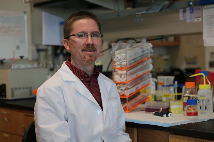Dr. Rohde and his team are working on unlocking the secrets of sponges and other undersea life that could help combat tuberculosis. / Credit: University of Central Florida