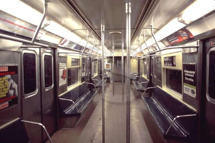 A new survey identified subway-dwelling microbes.